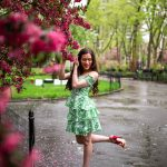 Lilly Pulitzer Cicely Dress in Madison Square Park