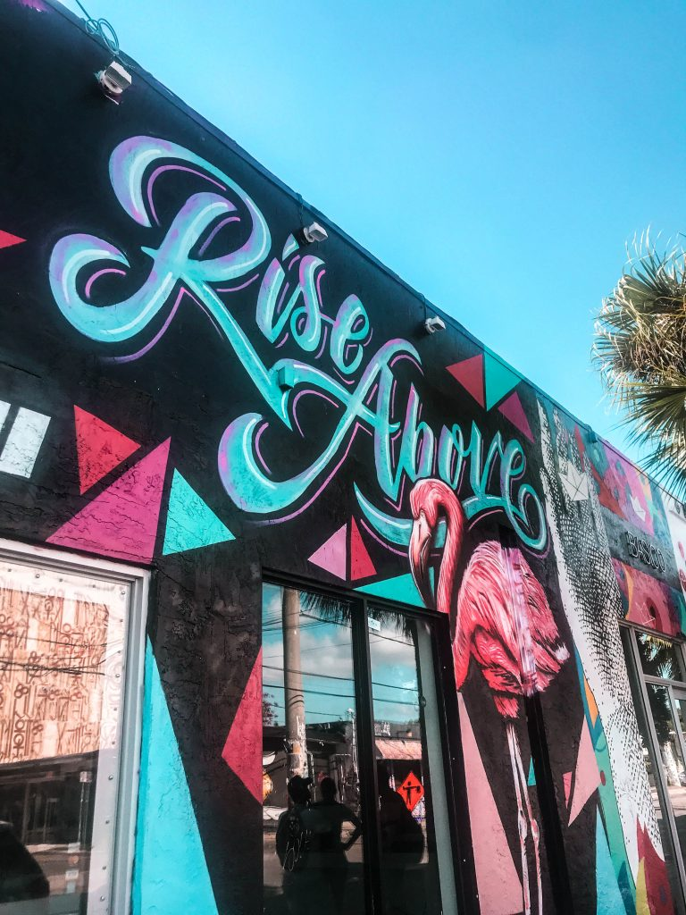 Rise above flamingo mural wynwood art district miami south florida unique walls where to take photos photoshoot location interesting things to do in miami