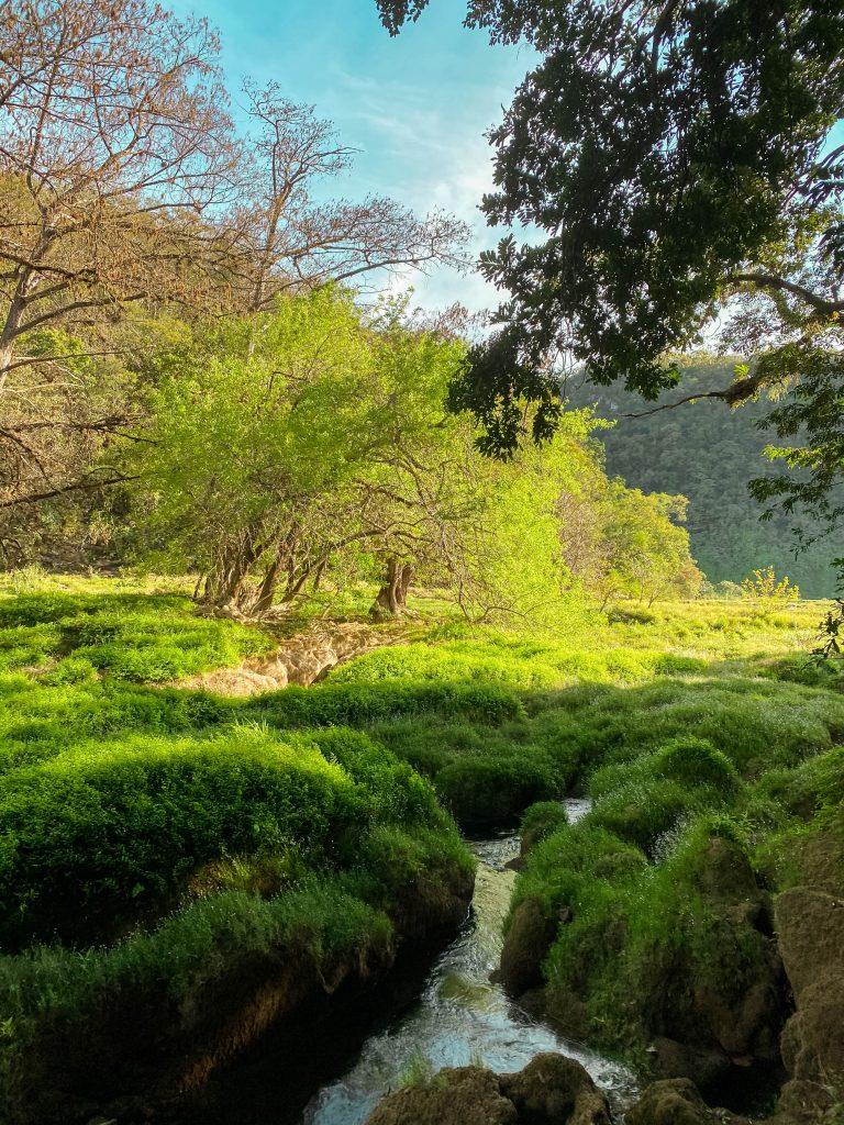 cascada de tamul top waters el naranjito hike gallinas river
