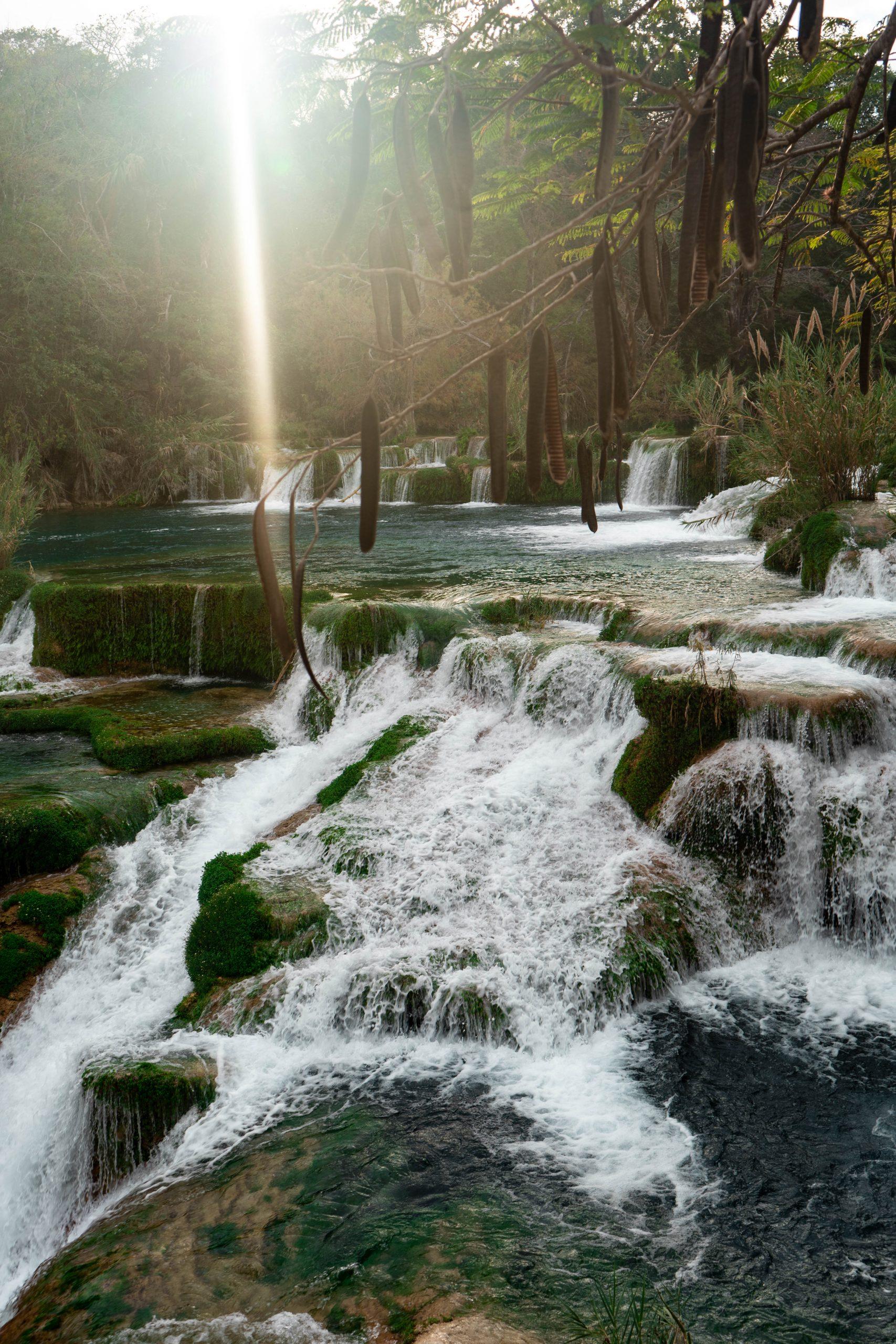 cascada el meco secret waterfall tamarind tree la huasteca potosina san luis potosi mexico