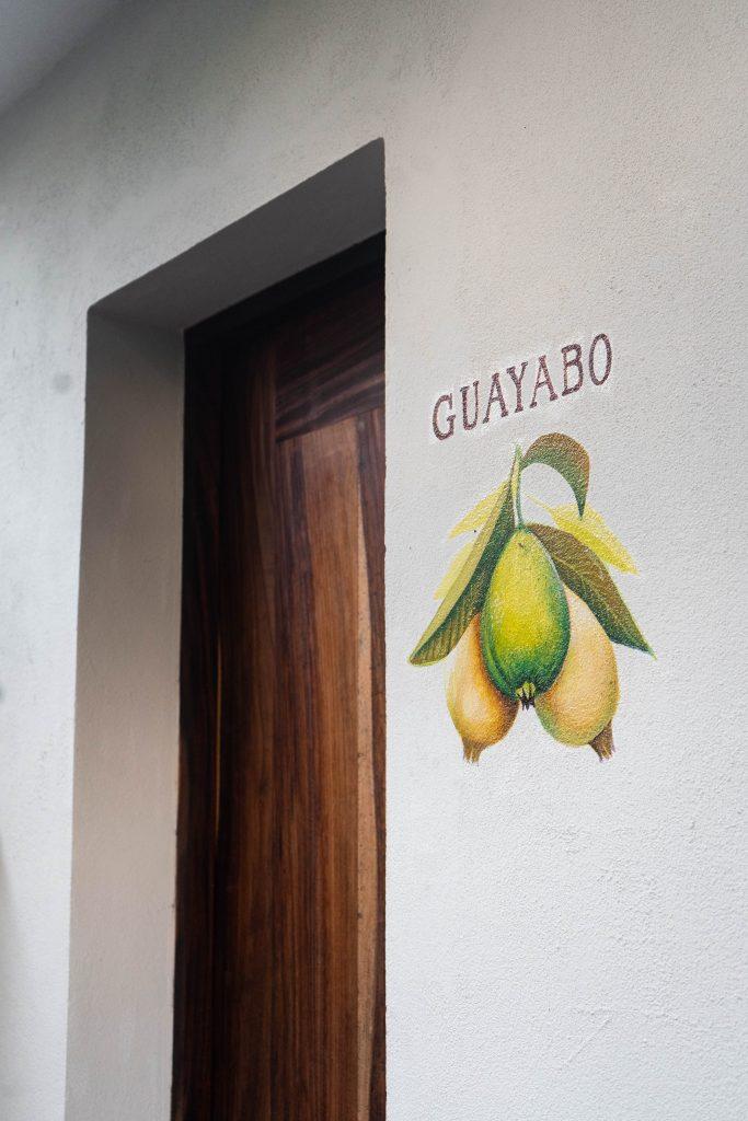 guayabo room hotel casa ortiz ciudad valles la huasteca potosina san luis potosi mexico fruit mural
