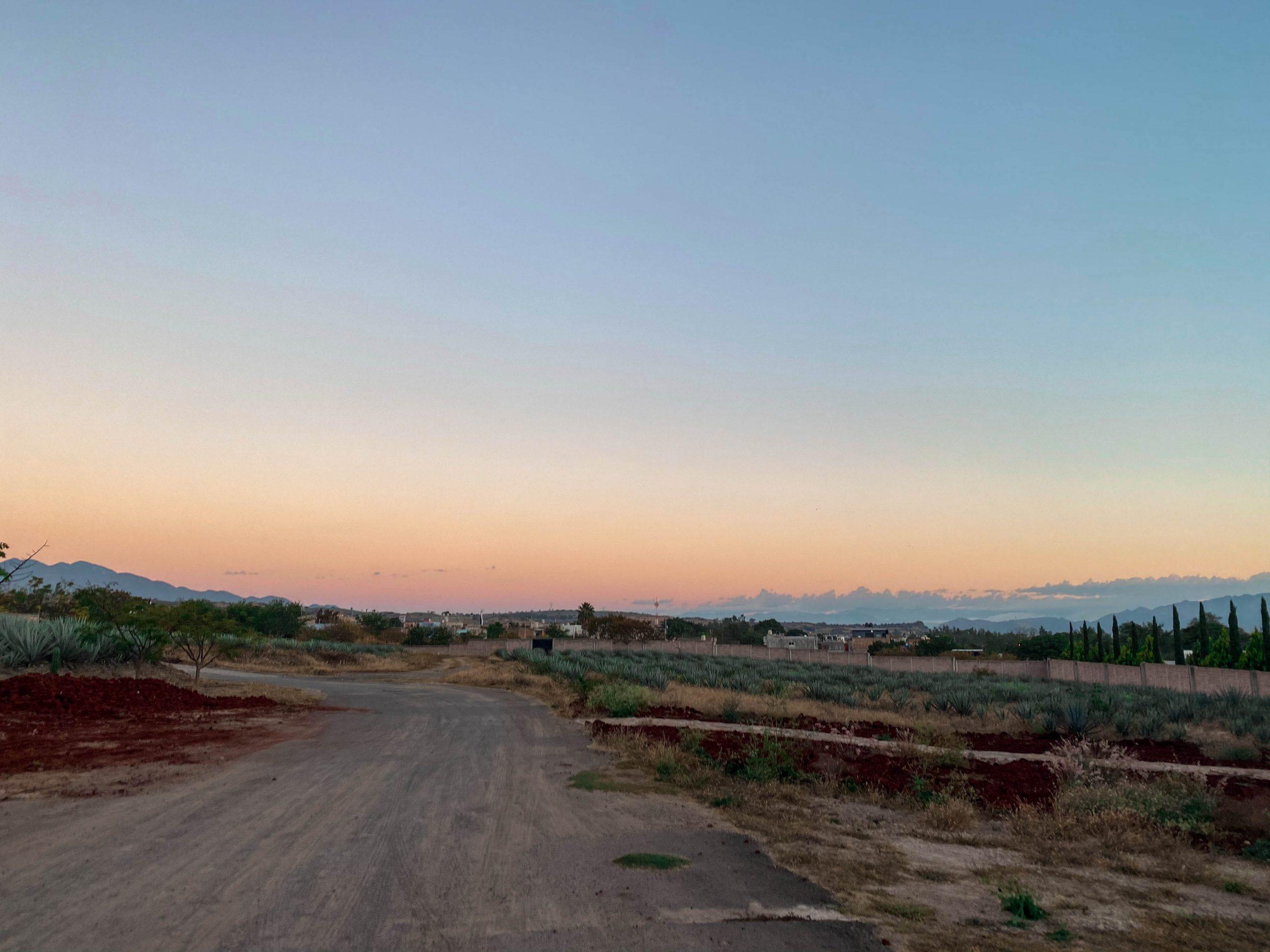 tequila sunrise jalisco mexico dirt road