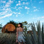 Stay in a Tequila Barrel Hotel in Tequila, Mexico - Matices Hotel de Barricas
