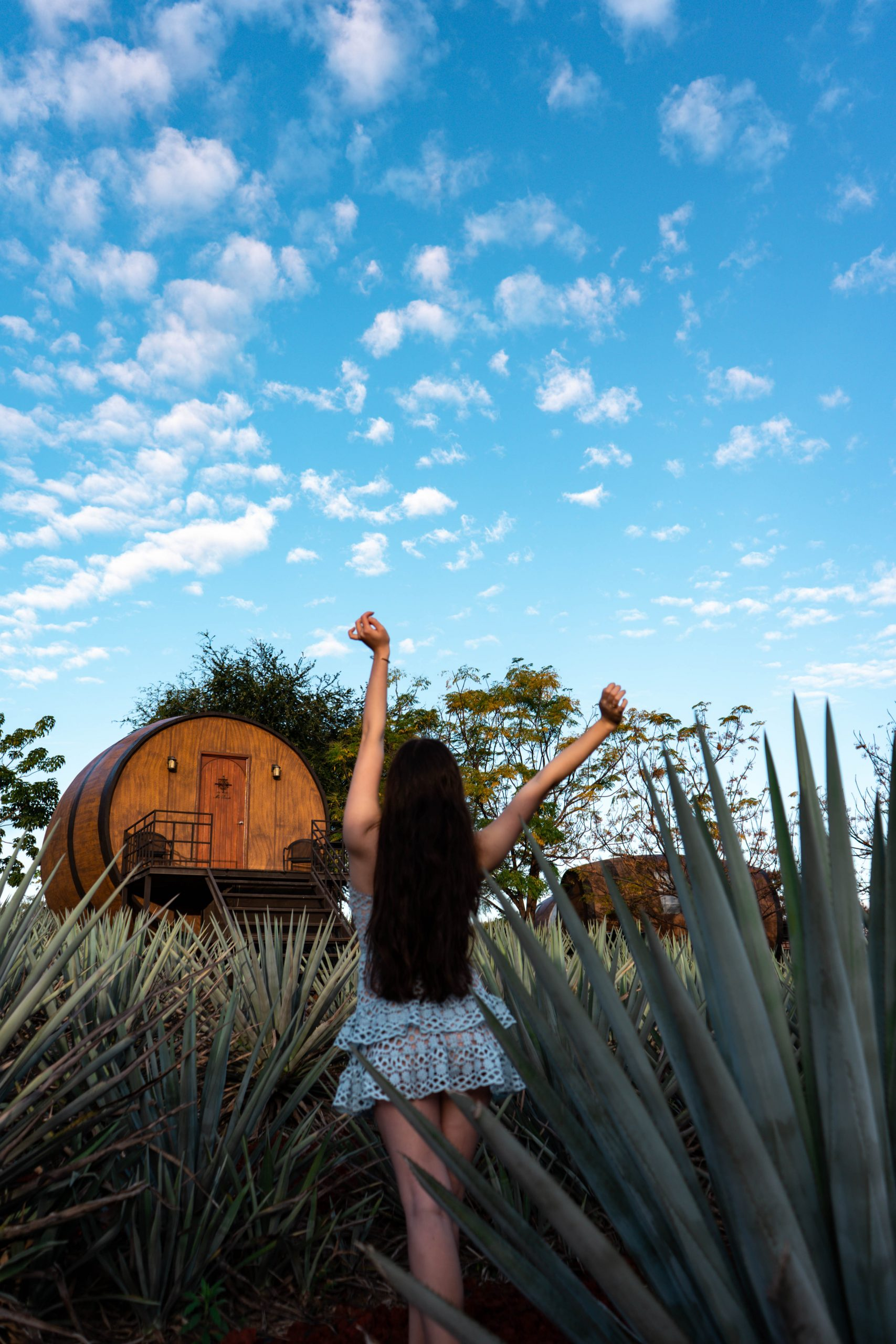 blue agave field tequila hotel mexico matices hotel de barricas barrel hotel tequila sunrise jalisco mexico lulus beauty and lace pale blue crochet mini dress gucci marmont metallic gold heels sandals unique luxury boutique hotel travel blogger travel guide instagrammable hotel