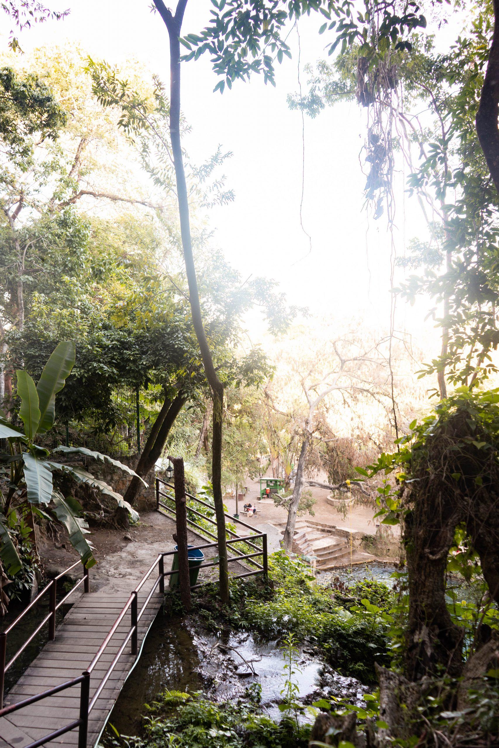 cascadas de tamasopo mirador lookout san luis potosi mexico la huasteca potosina adventure travel rainforest waterfall